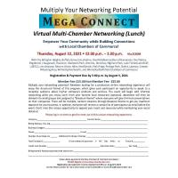 Multi-Chamber Mega Connect Virtual Networking Luncheon