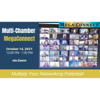 Multi-Chamber Mega Connect Virtual Networking Luncheon - October