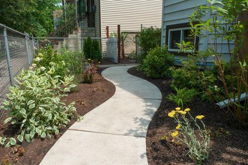 Helped create the curve in the sidewalk then designed and installed the garden.