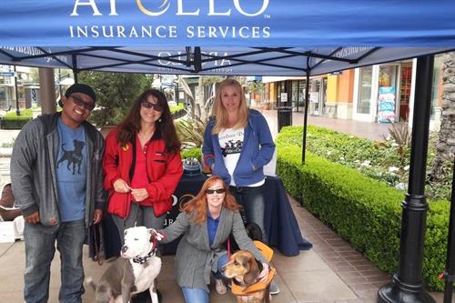 2014 Priceless Pets Drive