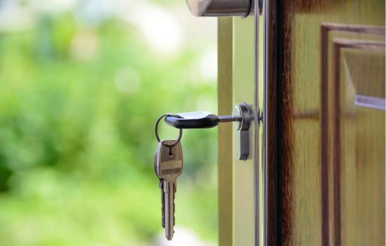 Realtors & Real Estate