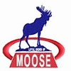 Clinton Moose 363/474