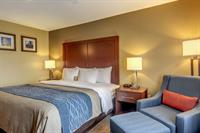 Gallery Image comfort_inn_King_Bedroom_for_King_Suite.jpg