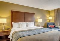 Gallery Image comfort_inn_Regular_King.jpg