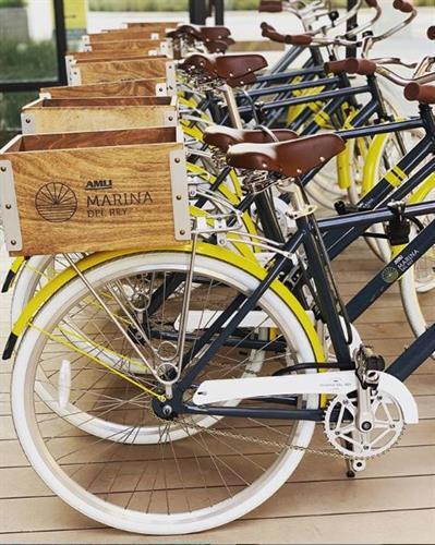 Gallery Image Bicycles.JPG
