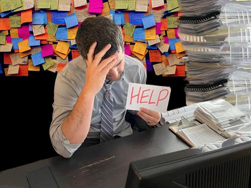 Overwhelmed? Call the Solutionist!