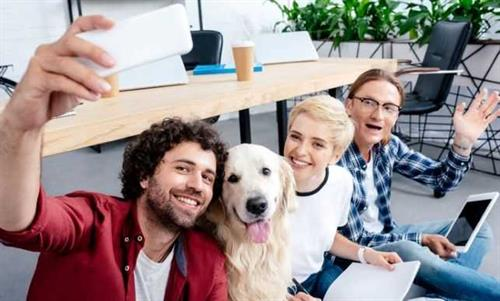 Gallery Image office_team_with_dog_small.jpg
