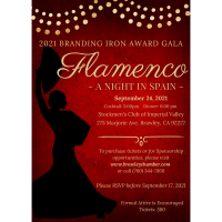 Gala Flamenco: A Night in Spain