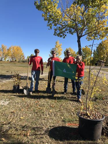 Replanting Projects with Tree Canada