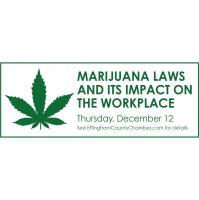 """Recreational Marijuana & Its Impact on Illinois Workplace Examined"""