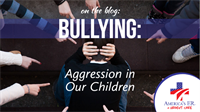 Bullying: Aggression in our Children