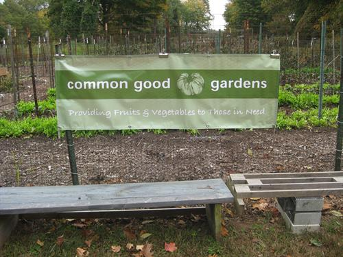 Common Good Gardens' (CGG) half acre is located behind Grace Episcopal Church in Old Saybrook.