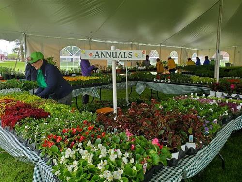 May Gardeners Market