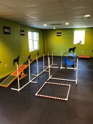 The Perfect Pup Dog Training Center
