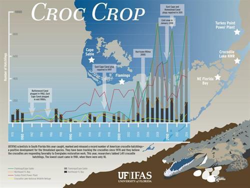 Gallery Image croc_crop_graphic.jpg
