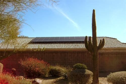 Arizona cactus with solar house