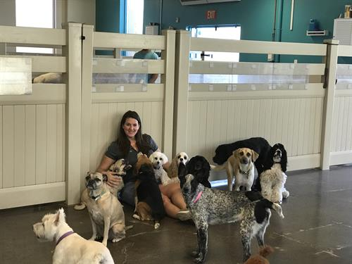 Rebecca in her element, surrounded by dogs.