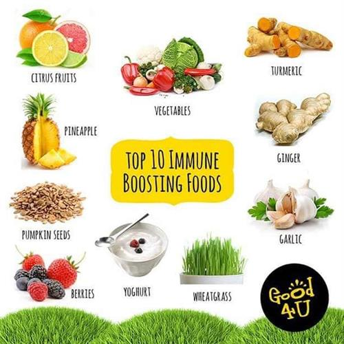 Gallery Image Immune_Boosting_Foods.jpg