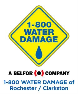 1-800 WATER DAMAGE of Rochester/Clarkston