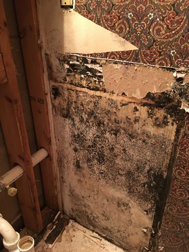 mold behind vanity - slow water leak due to faulty valve