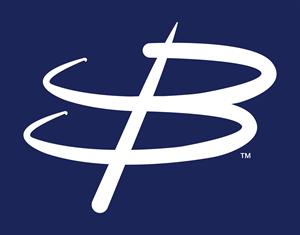 BlueBrier, LLC