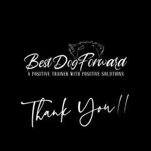 Best Dog Forward LLC