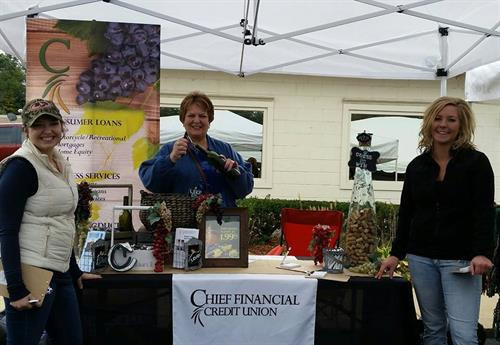 Our team at Fieldstone Winery's Grape Crush Event 2015