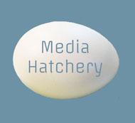 Media Hatchery LLC logo