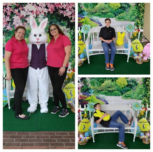 Easter bunny, backdrop and photography