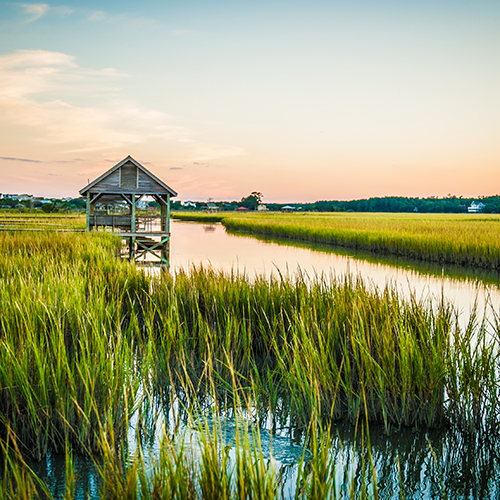 Pawleys Island Creek
