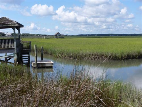 Salt marsh creek vista on Pawleys Island