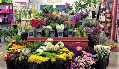 Sweet Meadows Flower Shop