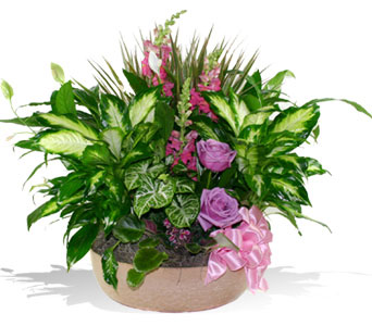 Gallery Image dishgarden_with_fresh_flowers.jpg