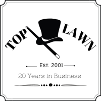 Top Lawn