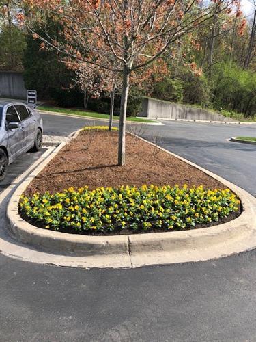 Client Parking Lot