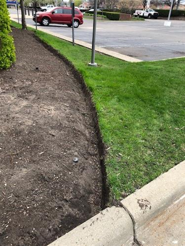 Client Bed Edging