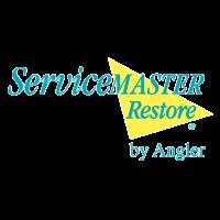 Client Services Director