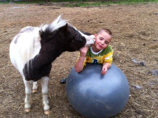 Jonah our mini horse sharing some kisses