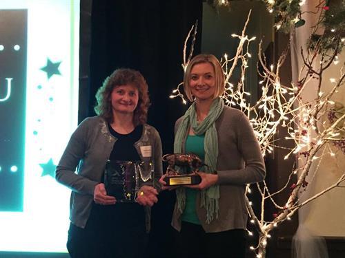 Sauk Prairie Chamber Award
