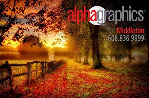 Gallery Image Alphafall.jpg