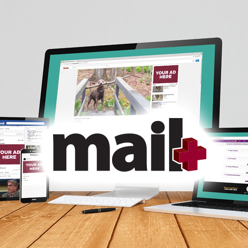 "Our New Marketing Service ""Mail Plus"""
