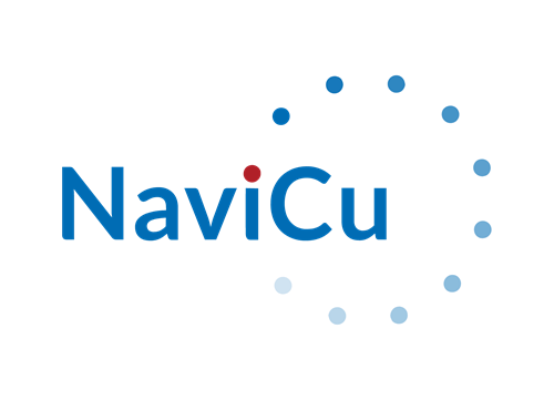 NaviCu • Your Custom Business Solutions Partners