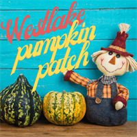 Westlake Prep Pumpkin Patch