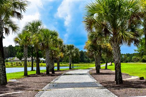Walking/Biking Trails - Hilton Head Lakes
