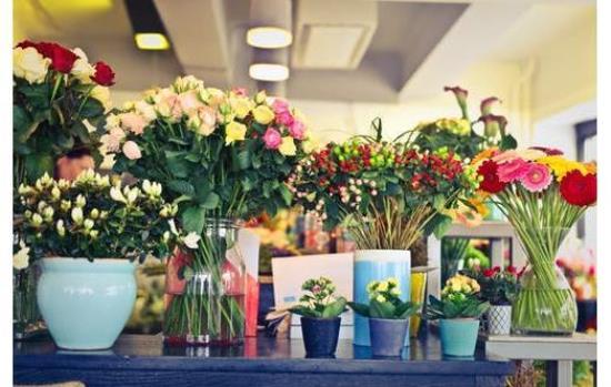 Florist /  Flower Shop