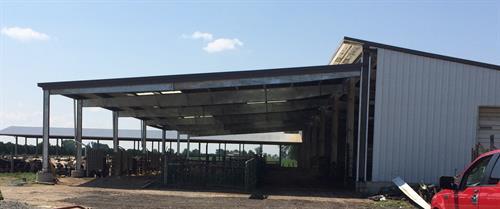 Phil Shaffer-cattle barn