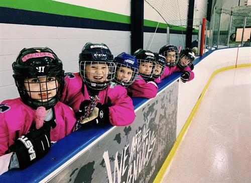 Girls Hockey program