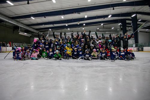 Beginner hockey programs