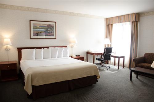 Relaxing Executive King Guestroom
