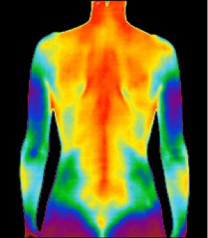 Full Body Thermography Available